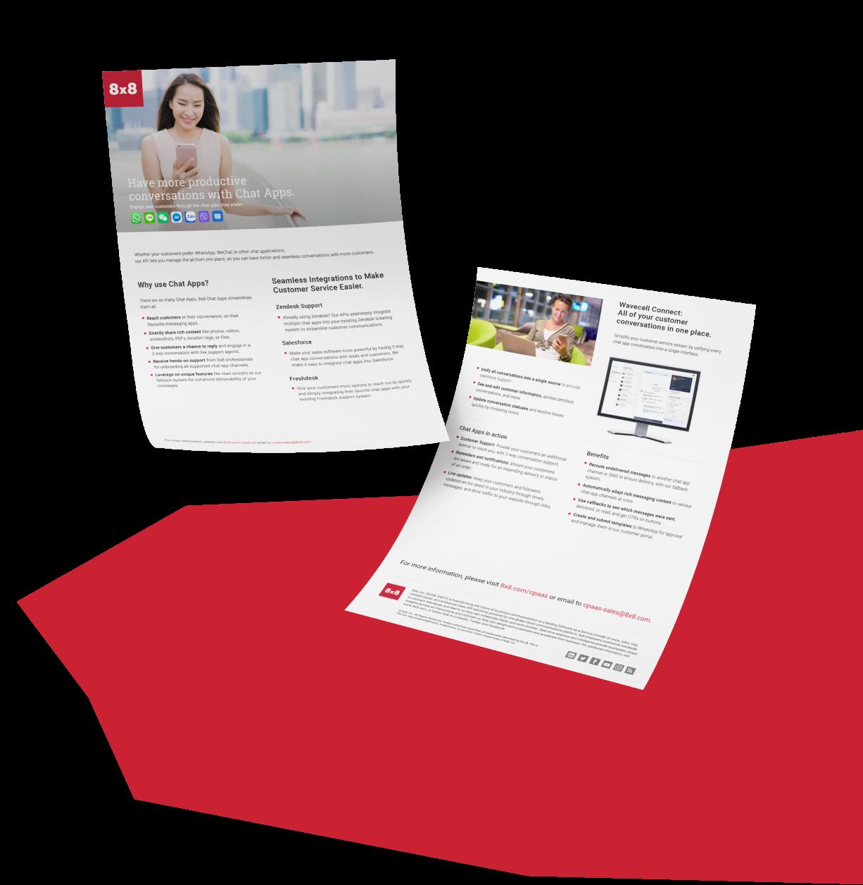 The Visual Team web client thumbnail - 8 x 8 brochure